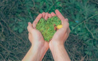 ¿Cómo celebrar el Día Mundial del Medioambiente?