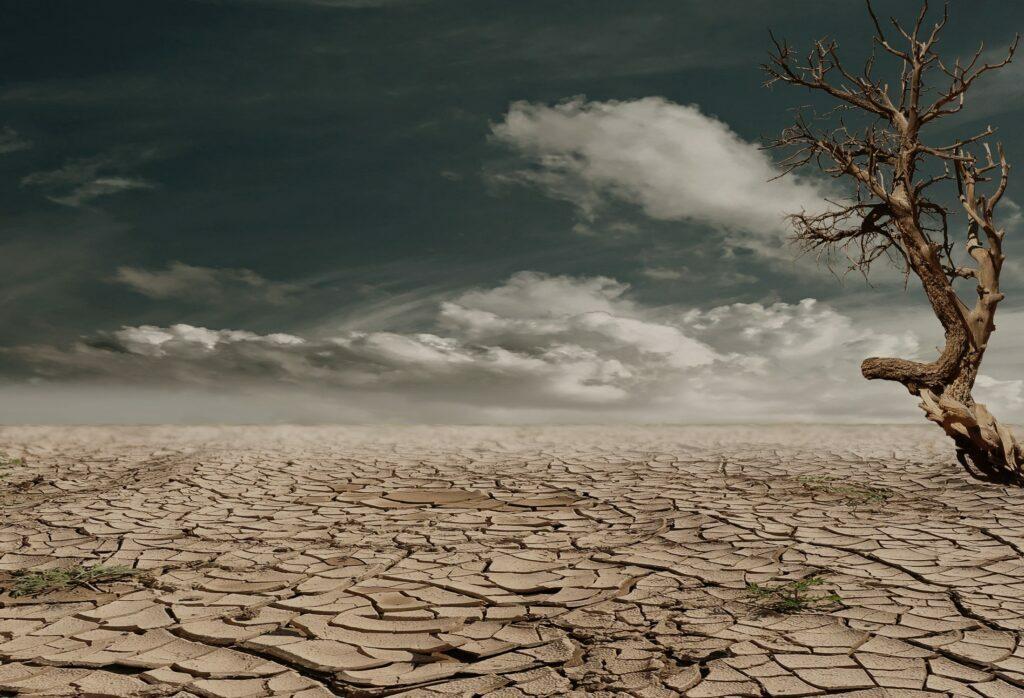 sequía de la tierra