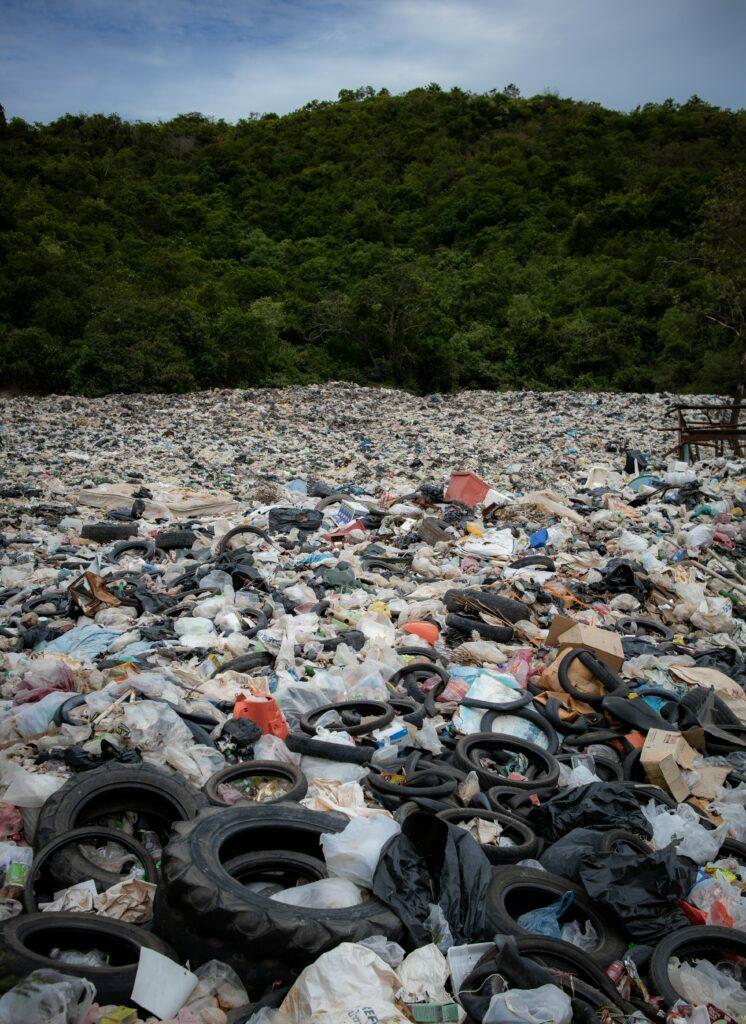 impacto medioambiente